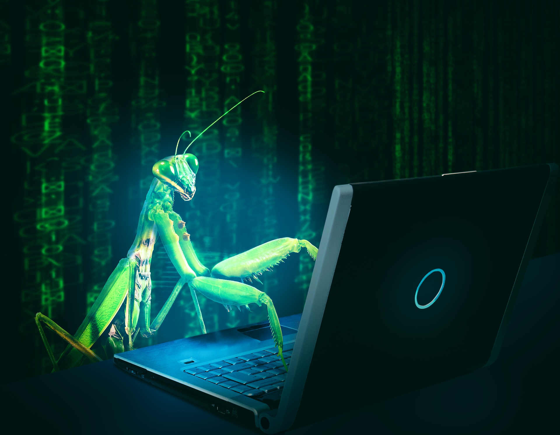 While perhaps a bug is not literally taking over your computer, like in this image, having a malware infection can feel like it!