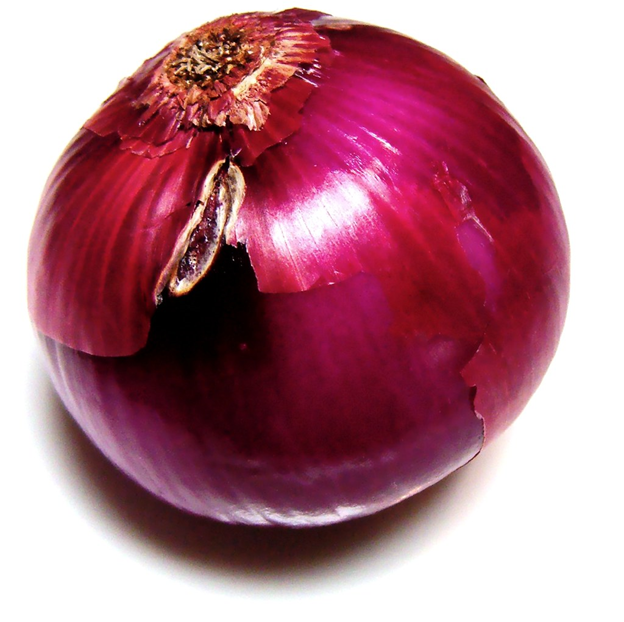 A beautiful red onion--a great visual for the .onion websites that comprise the so called dark web.